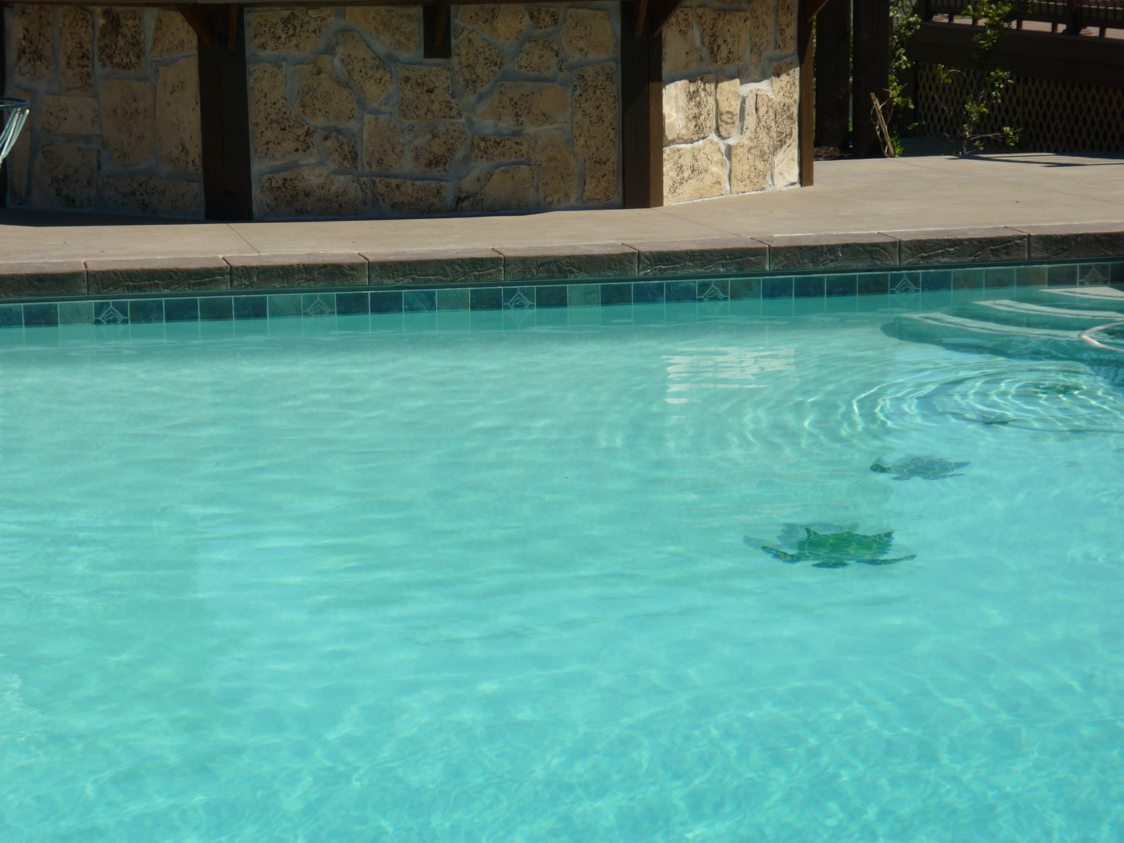 Utah Gunite Pools And Slide Companies In Utah Chris Jensen Landscaping In Salt Lake City And