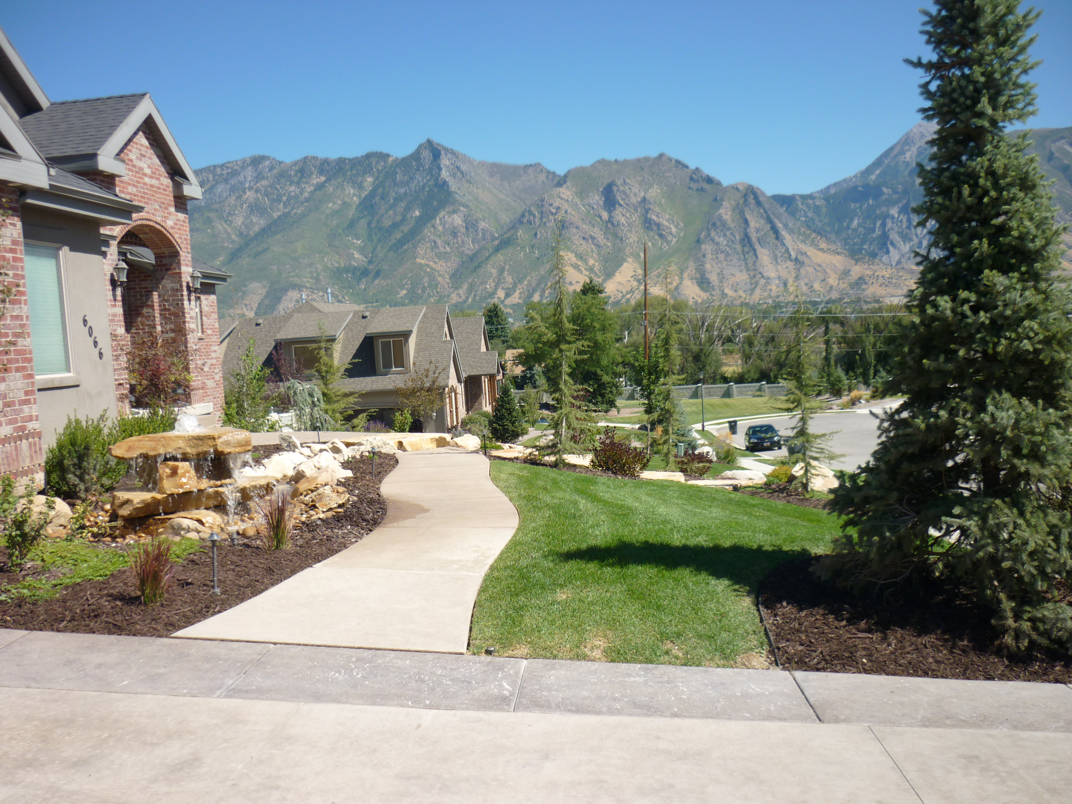 Tree Names And Pictures In Utah Chris Jensen Landscaping