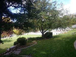 Landscaping, Landscapers, Landscaping in Utah 039