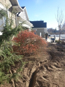 landscaping in Cottonwood Heights 040