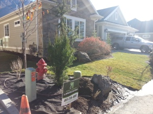 landscaping in Cottonwood Heights 049