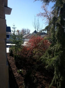 landscaping in Cottonwood Heights 059